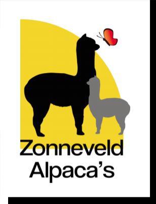 Zonneveld Alpaca`s